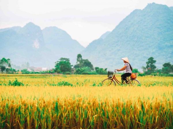 Cycle Saigon to Hanoi, Vietnam